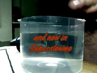 Sperm In Water