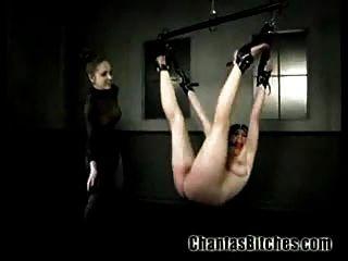 Hardcore Bondage Bitches !