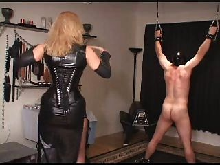 Punished By The Bullwhip