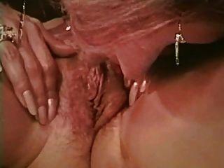 Adriana volpe erotic cartoon