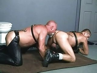 Leather bear sex