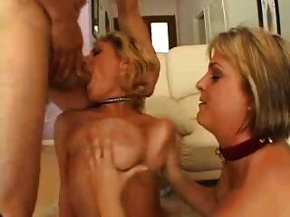 Blondes, Big Tits, Fishnets, Anal