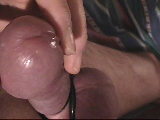 Best of Cum On The Tip Of My Hard Cock