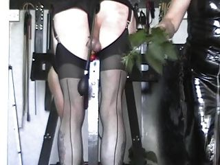 Cbt And 50 More On The Post