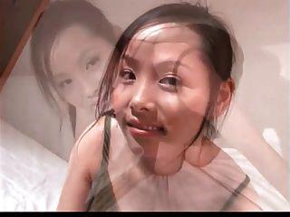 Asian Qianzhen Wan Bird Series-07