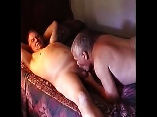 Straight Bears-daddys