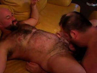 Chub Bears On Sofa