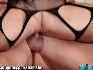 Doghouse Bisexual Anal With Hot Jocks