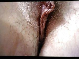 Long Pussy Lips